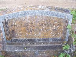 Arthur T Adkins
