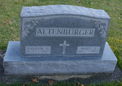 Andrew H Altenburger
