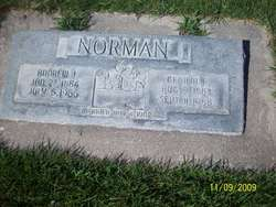 Andrew John Norman