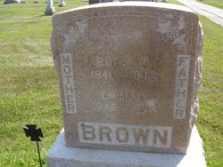 Royal Oran Brown
