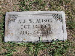 Ali W Alison
