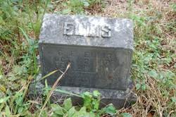 Gabriel E. Ellis