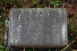 Samuel O. Ellis