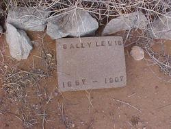 Sally <I>Light</I> Lewis