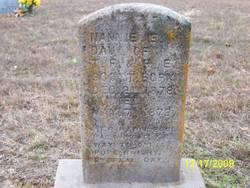 Nannie Elmira Scott