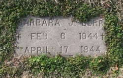 Barbara Jane Burr