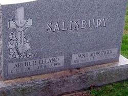 Arthur Leland Salisbury
