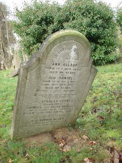 Ann Allsup