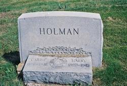 Harry Holman