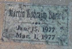 Martin Ephraim Barlow