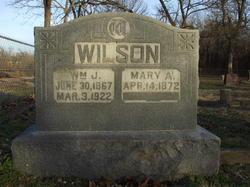 Mary Ann <I>Fields</I> Wilson