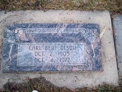 Carl Bert Olson