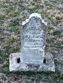 Infant Barnard