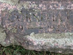 Cornelia J. <I>Miller</I> Robertson