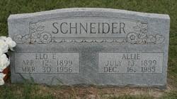 Allie Fronie <I>Cole</I> Schneider