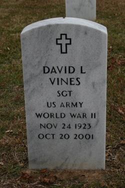 Sgt David L Vines