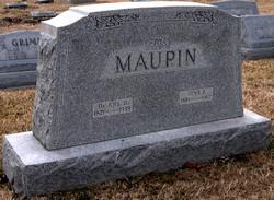 Dr Joel David Maupin