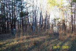 Crews Family Cemetery (Rt 2)