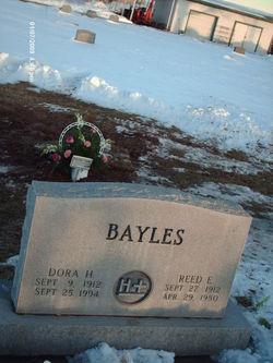 Reed Elwood Bayles