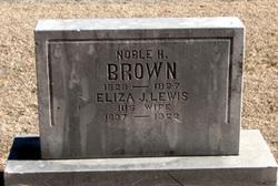 Eliza J. <I>Lewis</I> Brown