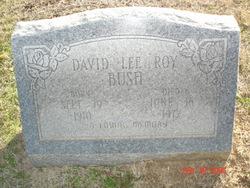 David Lee Roy Bush