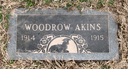 Joe Woodrow Akins
