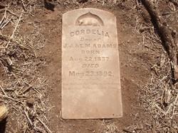 Cordelia Adams