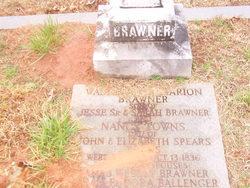 Washington Marion Brawner