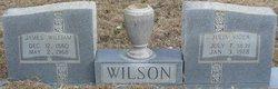 Julia Viola <I>Aaron</I> Wilson