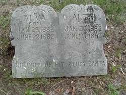 Alva Banta