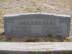 M Ennis Alexander