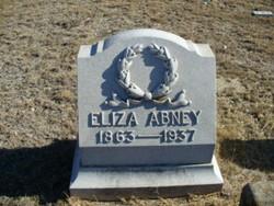 Eliza <I>Johnson</I> Abney