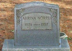 Arrina <I>Miles</I> Norris