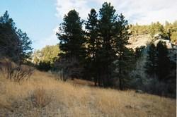 Palmer Canyon Cemetery
