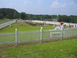 Old Bostick Cemetery