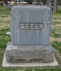 Mary Elizabeth <I>Tidwell</I> Seely