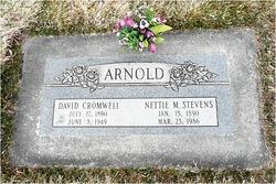 David Cromwell Arnold