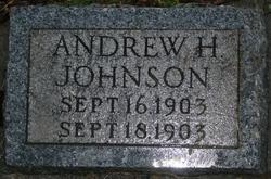 Andrew Henry Johnson