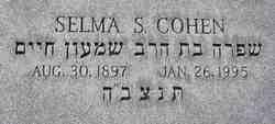 Selma S Cohen