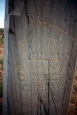 Julia Ann <I>Stoddard</I> Gibbons