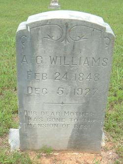Agnes Grace <I>Camp</I> Williams