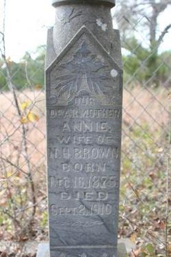 Annie Narcissa <I>Whitefield</I> Brown