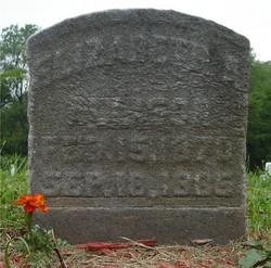 Elizabeth A. Allison