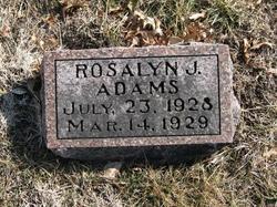Rosalyn J. Adams