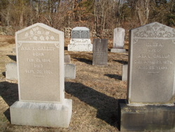 Asa Lyman Gallup