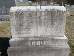 William Ingle