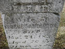 Sarah <I>Disbrow</I> Anderson