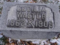 Cecilia <I>Schwartz</I> Walter