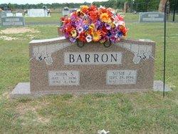 Susan J. <I>Newton</I> Barron