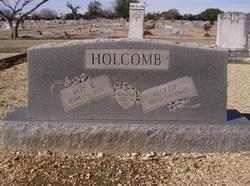 Hattie <I>Gieselbrecht</I> Holcomb